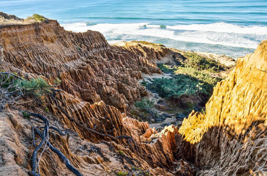 Closeup pattern of torrey pine eroded sandstone cliffs on coast in La Jolla by San Diego