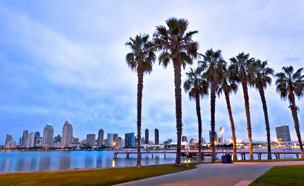 Palm trees lining the coast of the San Diego harbor as the sun sets and leaves a soft blue pigment in the cloudy sky