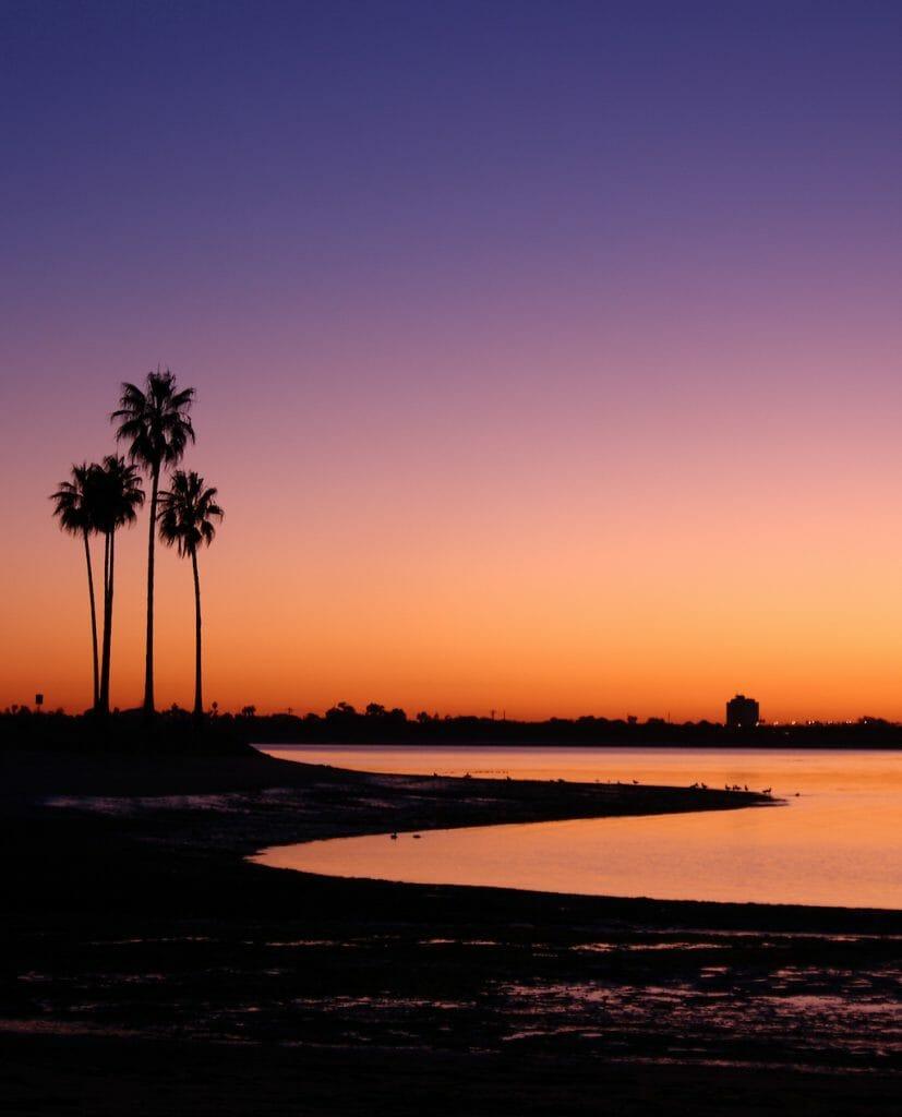 Palm Trees Mission Bay San Diego California USA, Twilight Sunset