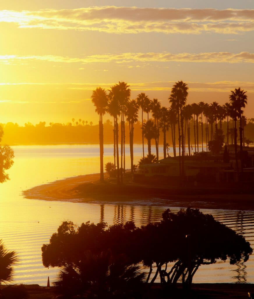 A view of palm trees around the shores of Mission Bay at sunset in San Diego, Southern California.