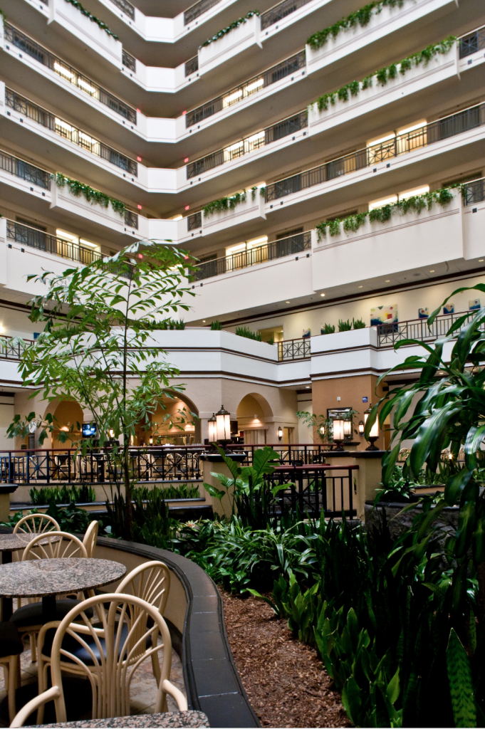 A lobby in the middle of towering walls with  foliage all over
