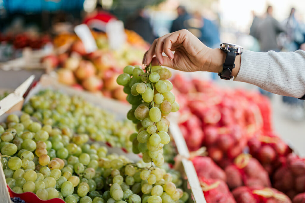 Close-up image of female hand holding grapes at farmers market.