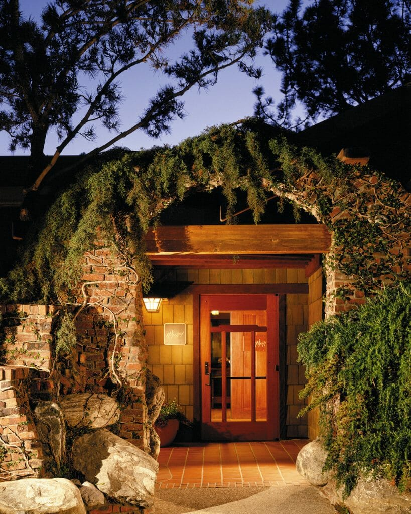 A hobbit house looking entrance with a warm light glowing from it, vines overhead