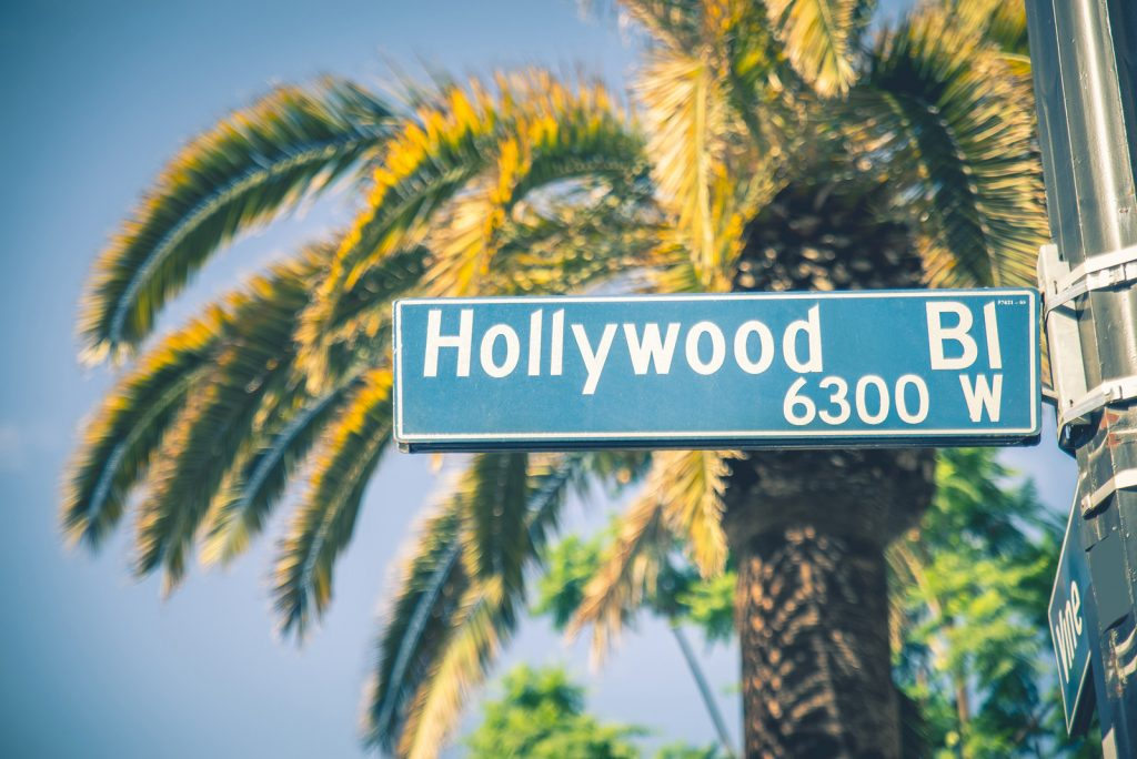 Street sign Hollywood BL in front of Palm Tree and blue sky