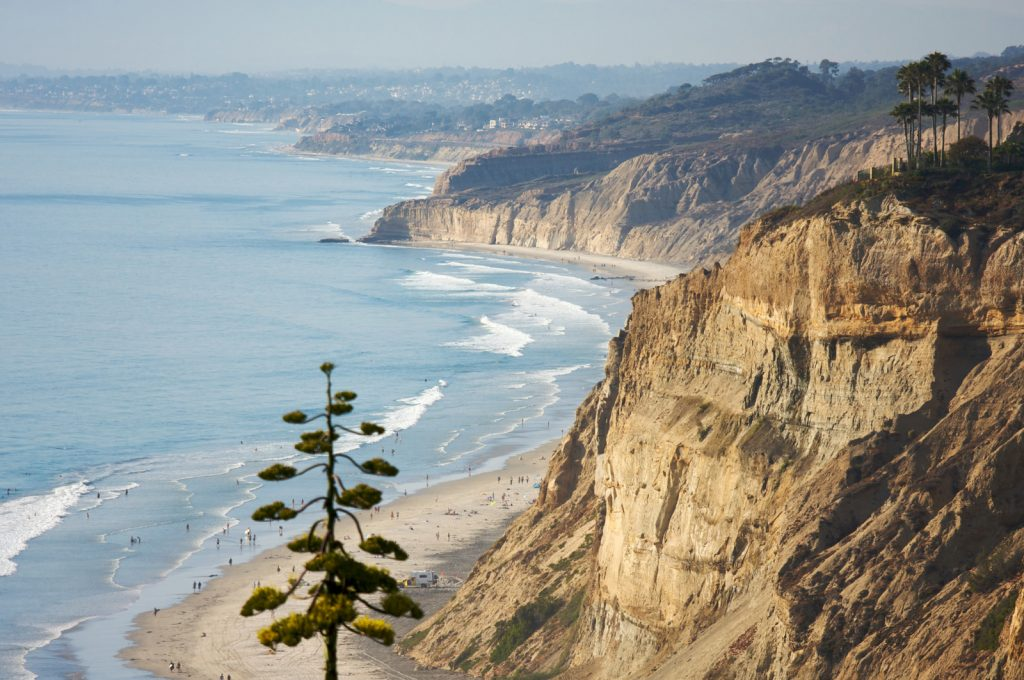 View from Torrey Pines State Park over the La Jolla coast line, cliffs with famous torrey pines.