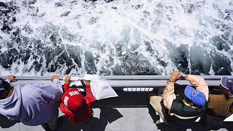 People looking over the reeling of a boat, photographed from above - Whale Watching San Diego